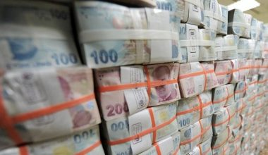 Türkiye mayıs ayında 600 milyon dolarlık fazla bütçe ayırdı