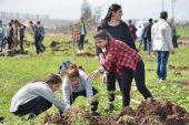 Türkiye 2016 yılında çevreye 10,6 milyar dolar harcadı: TÜİK