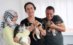 5 Türk kadın Rize'yi başıboş kedi yuvasına çevirdi
