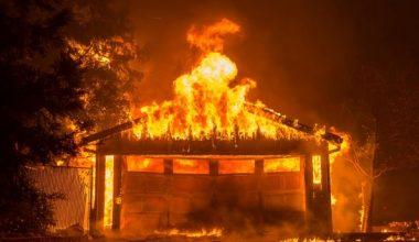 Ölüm oranı California orman yangında 31'e yükseldi, 228 hala kayıp