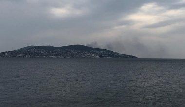 İstanbul açıklarında Büyükada'da yangın çıktı