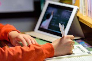 Dil Okullarında Online Eğitim Uygulaması Devam Ediyor
